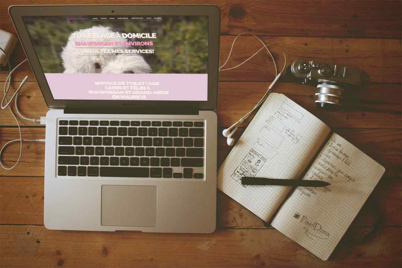 Photographie du lancement du site Internet La Douceur Animale